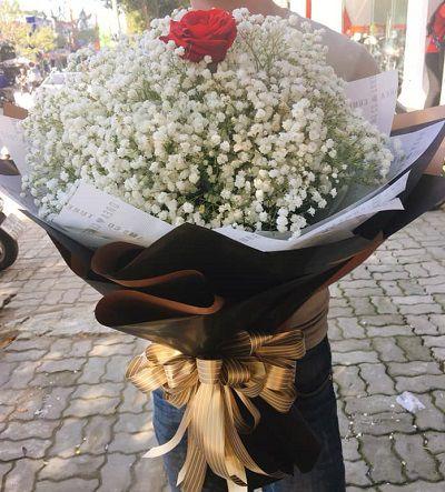 hoa bo dep o huong tra