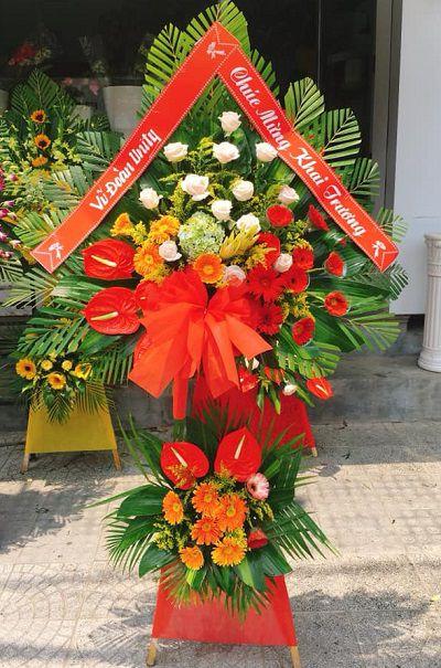 Hoa khai truong phong dien hue