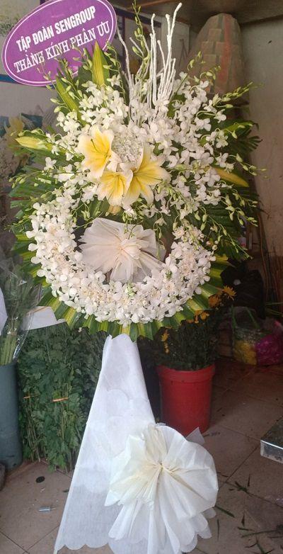 hoa tang le do luong nghe an