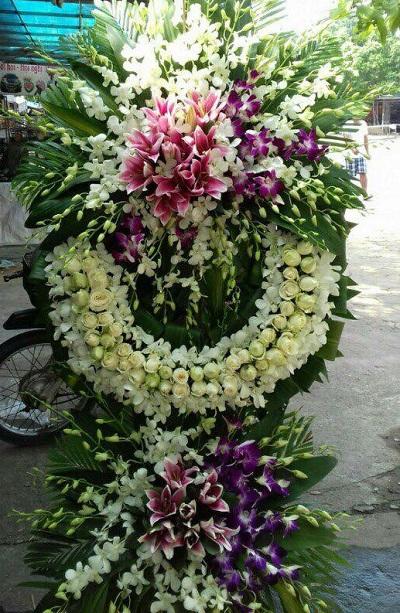 hoa tang le nui thanh quang nam