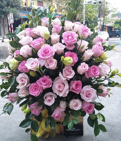 shop hoa o mong cai quang ninh