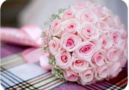 bo hoa mau hong