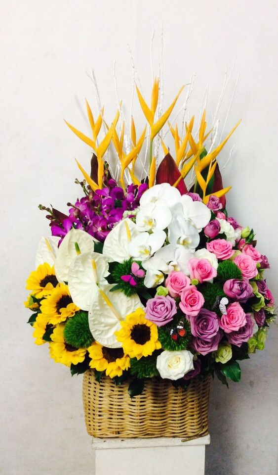 Hoa sinh nhat tang chong