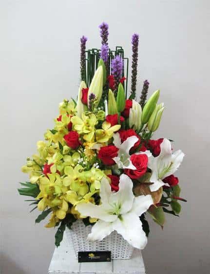 hoa tang sinh nhat nguoi gia