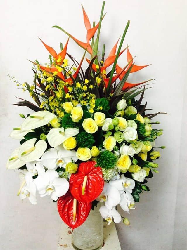 Hoa tặng sinh nhật người già