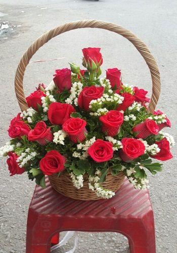 Hoa hong valentine