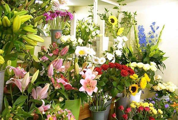 Shop hoa tươi đường Nguyễn Thị Minh Khai
