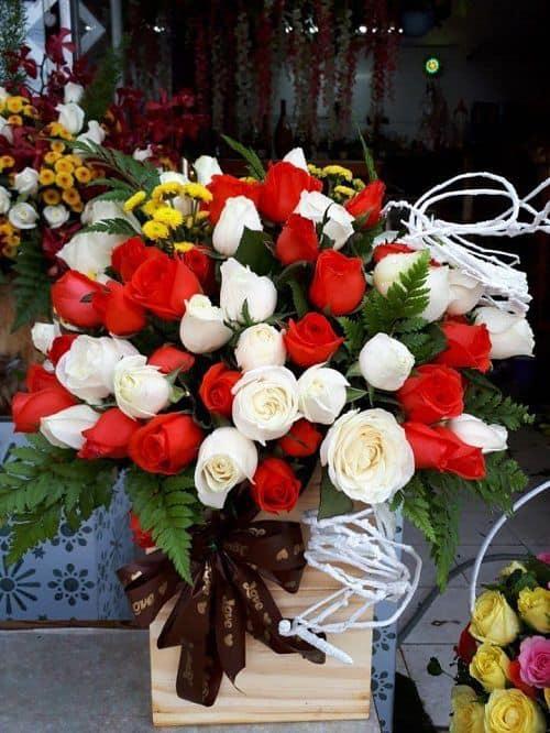 Hoa tuoi Vung Tau