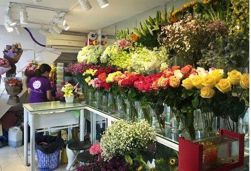Shop hoa tuoi huyen phuc tho
