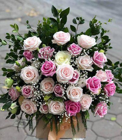 Hoa chuc mung