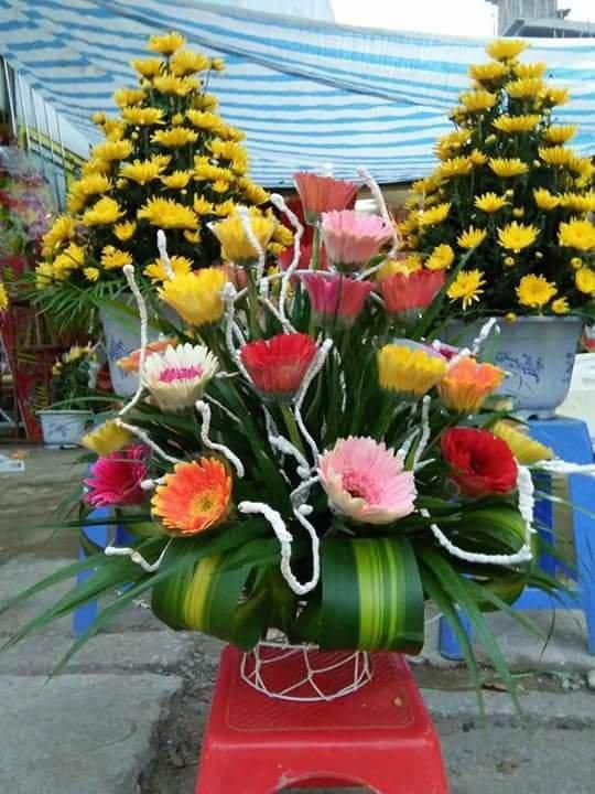 Shop hoa thanh hoa
