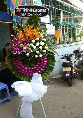 Hoa tang le mau tim