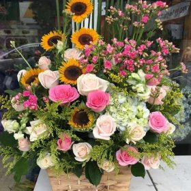 hoa sinh nhat dep