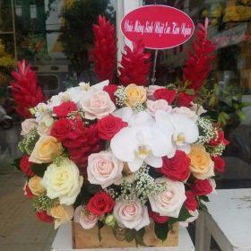 hoa tang sinh nhat dep