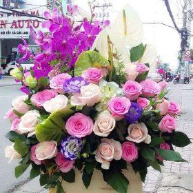 mua hoa sinh nhat dep