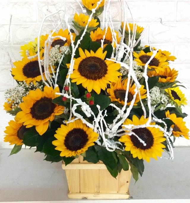 hoa tân gia