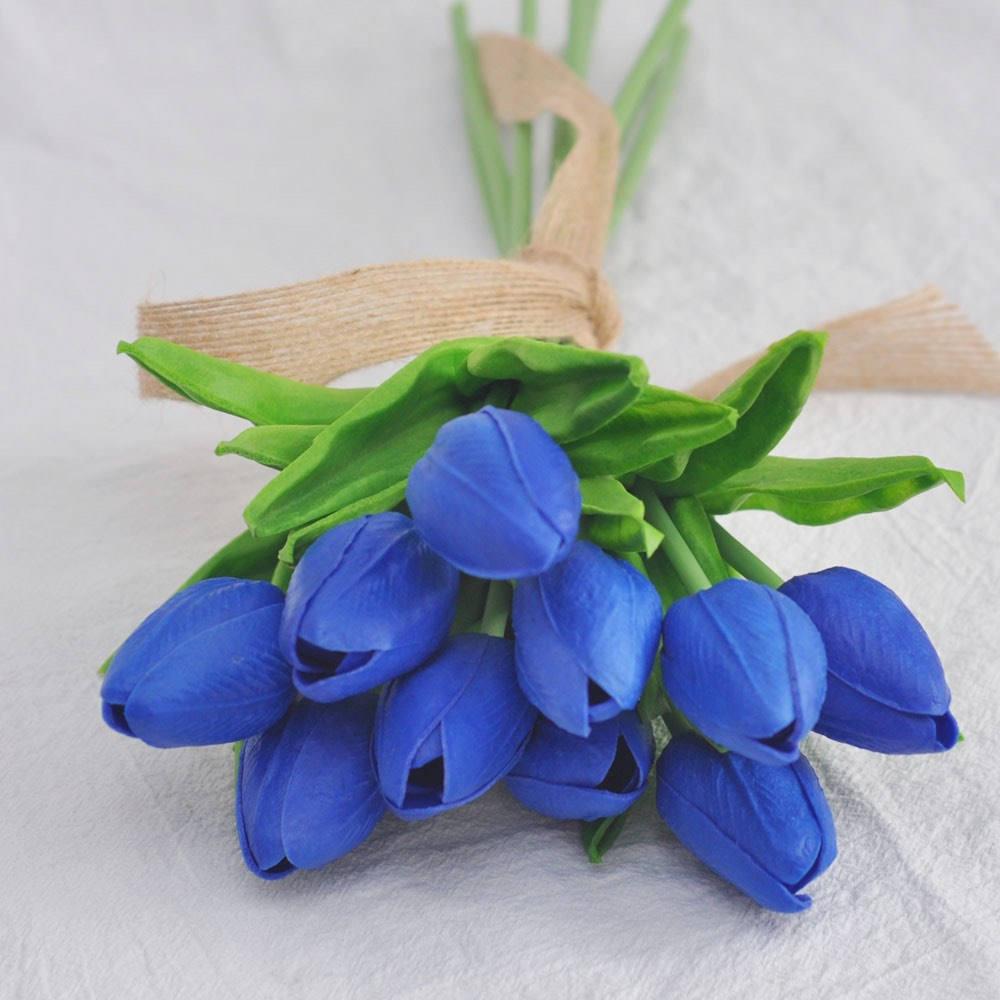 hoa tinh ban tulip xanh