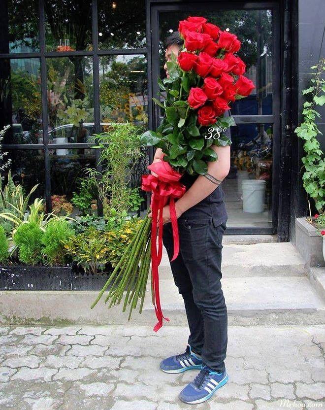 Hoa hồng ecuador khổng lồ