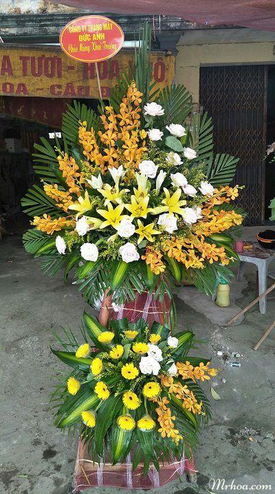 hoa khai truong thanh hoa
