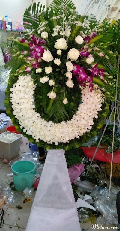 Hoa tang le an giang