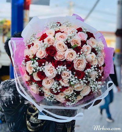 Hoa tuoi ha giang